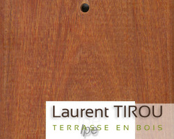 Laurent Tirou - Nos essences